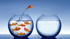 invertir en bolsa a largo plazo te cambia la vida